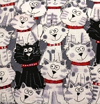 Black & White Cats