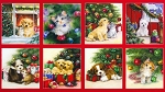 Christmas Pets - Panel - Combed Cotton