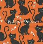 Fat Quarter - Bats & Black Cats - Bone Appetit - Orange
