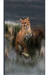Fleece - Call of the Wild - Mountain Lion - Panel - Digital - CUDDLE