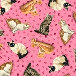 End of Bolt Piece - Fancy Felines - Tossed Cats - Pink - 6