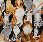 Fat Quarter - Feline Collection - The Cat's Meow