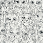 Feline Friends - Cat Faces - White