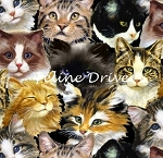 Furr Ever Friends - Cat Collage