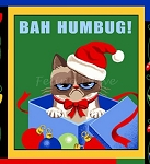Fat Quarter - Grumpy Cat - Christmas Patch