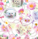 Fat Quarter - Kitty Glitter - Cats Medley - Digital