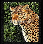 Leopards - Panel