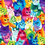Fat Quarter - Meow-Za - Multi Packed Cats