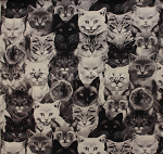 Fat Quarter - Michael's Cats - Gray