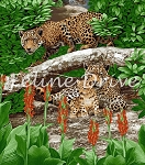 On the Wild Side -  Leopards - Panel