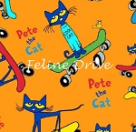 End of Bolt Piece - Pete the Cat - Skateboarding - Orange - 12