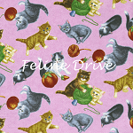 Fat Quarter - Purrfect Notions - Kitten Toss - Pink