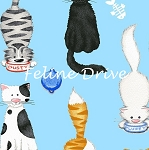 The Cat's Meow (Henry Glass) - Cute Cats - Light Blue