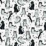 Whiskers & Tails - Black & White Cats on White