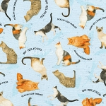 Whiskers & Tails - What We Learn From Cats