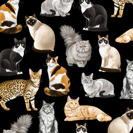Assorted Realistic Cats - Black