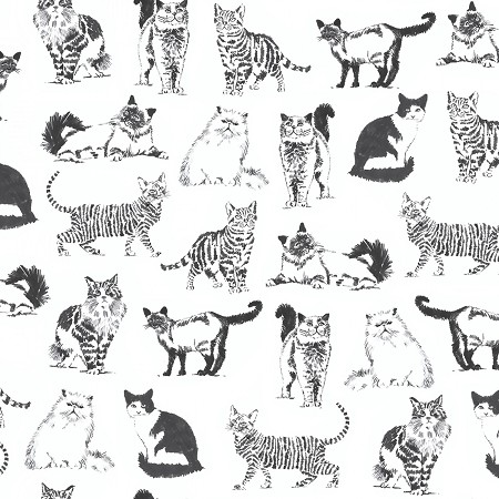 Fat Quarter - Sketched Realistic Cats - White
