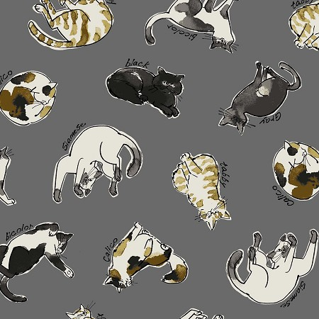 Dogs & Cats - Cat Toss - Gray - CANVAS