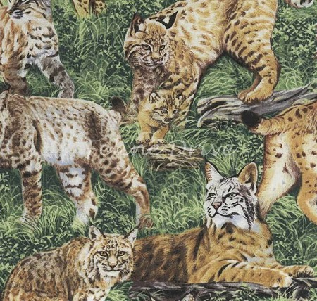End of Bolt Piece - American Wildlife - Bobcats - 19""