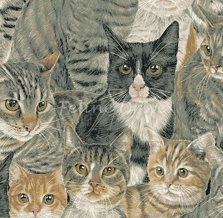 Fat Quarter - Cats The Way I Like It - Packed Cats - Multi