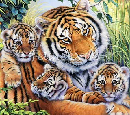 Animal Pride - Lily's Pride - Tiger Panel - Digital