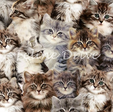 End of Bolt Piece - One of a Kind - Kittens - Digital Print - 13.5""