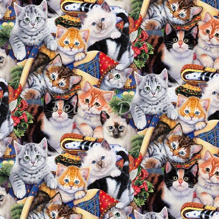 Fat Quarter - Wild Instincts - Cozy Kittens - Digital